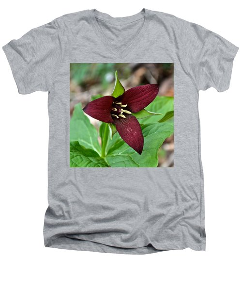 Red Trillium Men's V-Neck T-Shirt
