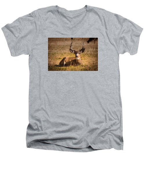 Men's V-Neck T-Shirt featuring the photograph Relaxing Buck by Janis Knight