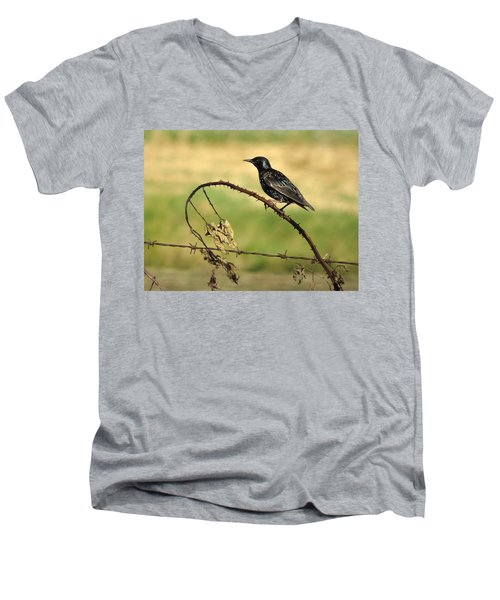 Rest Stop 6 - Oregon Men's V-Neck T-Shirt