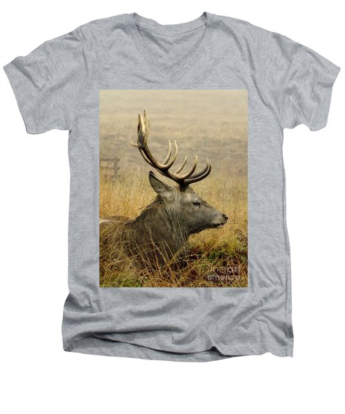 Resting Stag Men's V-Neck T-Shirt