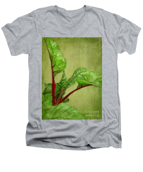 Rhubarb Men's V-Neck T-Shirt by Judi Bagwell