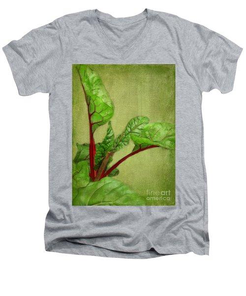Rhubarb Men's V-Neck T-Shirt