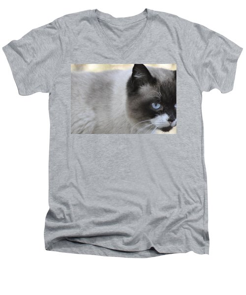 Men's V-Neck T-Shirt featuring the photograph Ringtail by Sarah McKoy