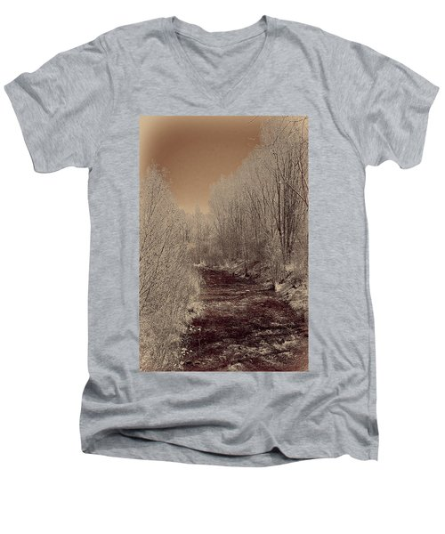 Rio Taos Bosque Iv Men's V-Neck T-Shirt
