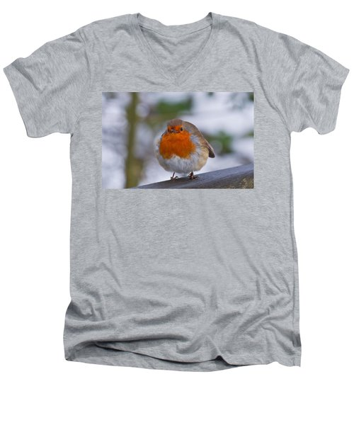 Robin 1 Men's V-Neck T-Shirt