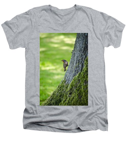 Robin At Rest Men's V-Neck T-Shirt