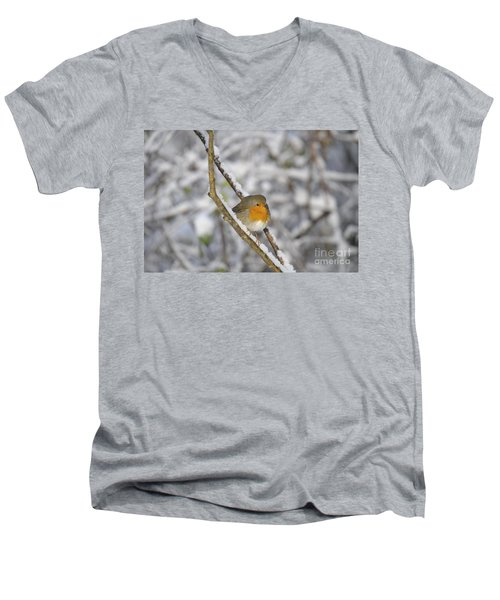 Robin At Winter Men's V-Neck T-Shirt