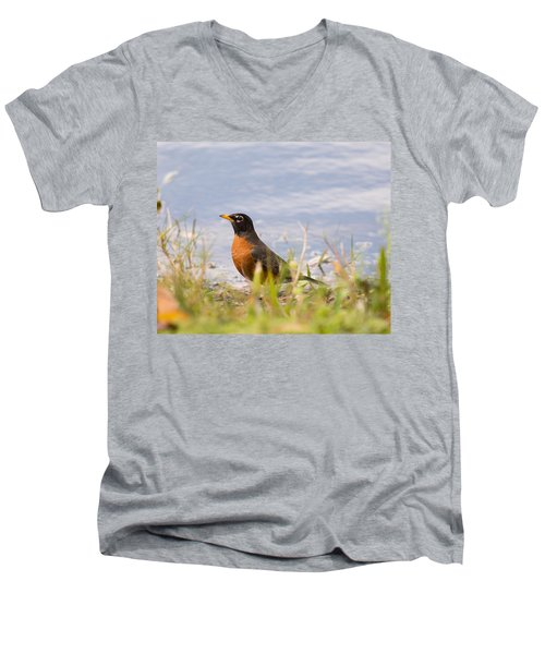 Men's V-Neck T-Shirt featuring the photograph Robin Viewing Surroundings by John M Bailey