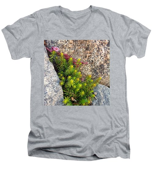 Men's V-Neck T-Shirt featuring the photograph Rock Flower by Meghan at FireBonnet Art