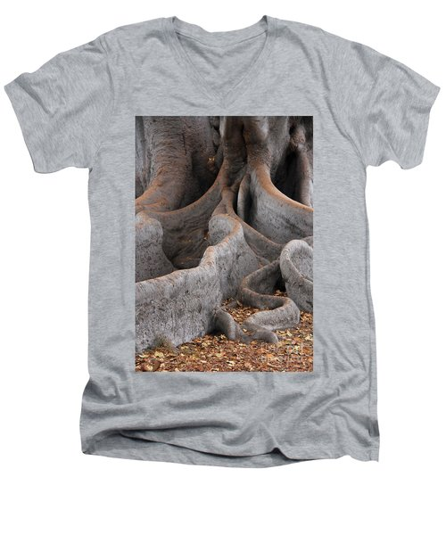 Roots Of The Fig Men's V-Neck T-Shirt by Suzanne Oesterling