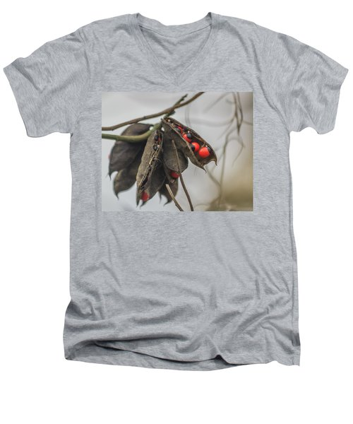 Rosary Pea Men's V-Neck T-Shirt
