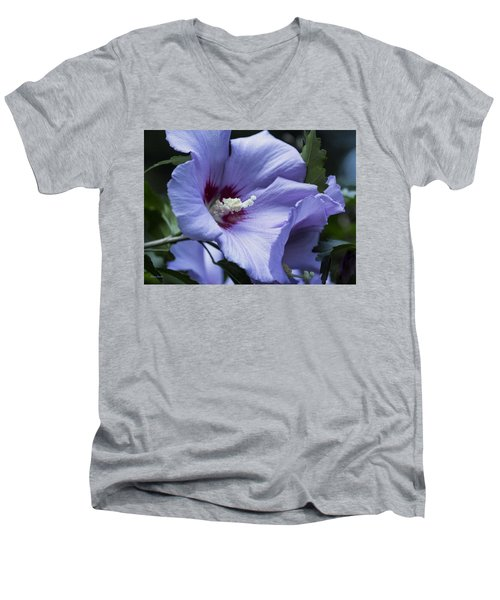 Rose Of Sharon Men's V-Neck T-Shirt