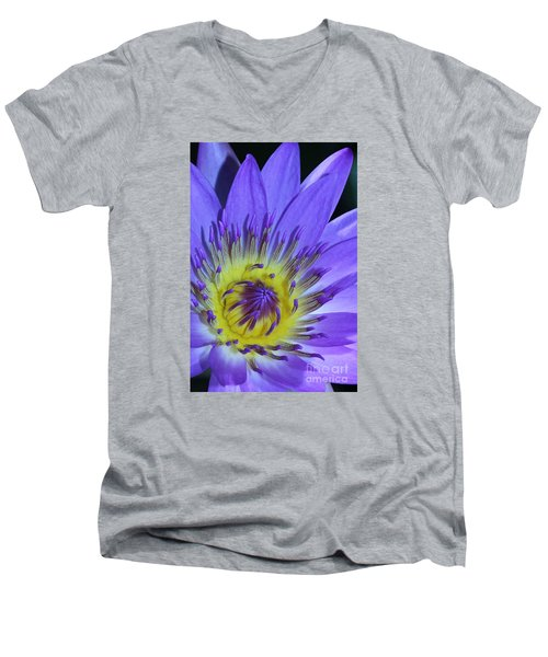Royal Purple Water Lily #11 Men's V-Neck T-Shirt