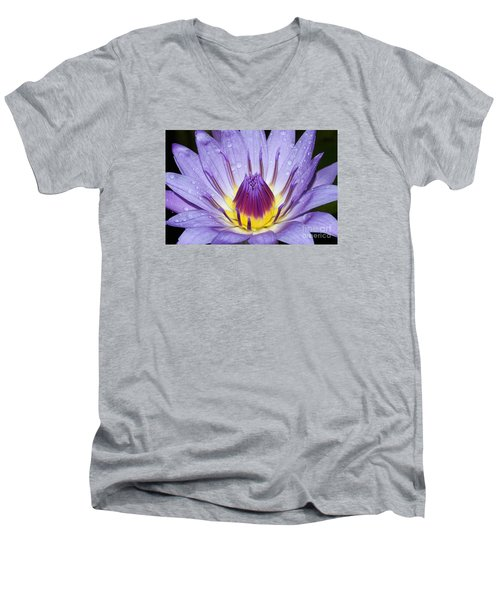Royal Purple Water Lily #3 Men's V-Neck T-Shirt