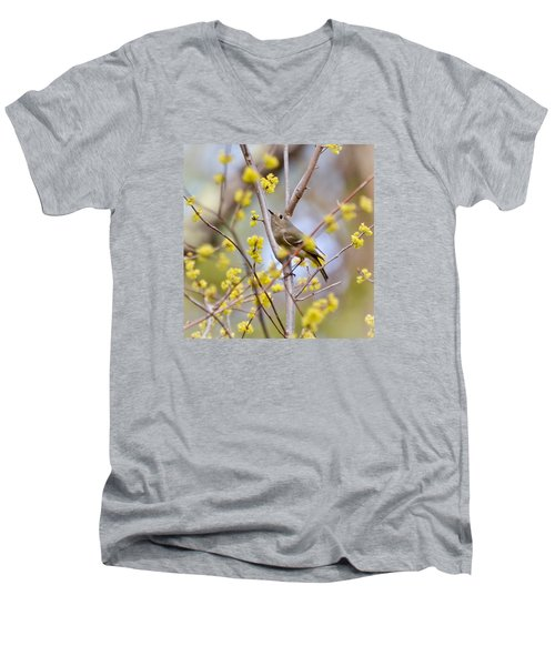 Men's V-Neck T-Shirt featuring the photograph Ruby-crowned Kinglet by Kerri Farley