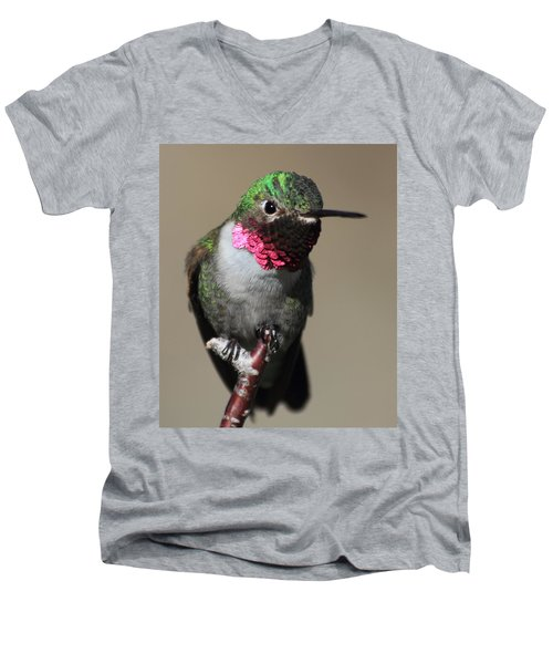 Men's V-Neck T-Shirt featuring the photograph Ruby-throated Hummer by Shane Bechler