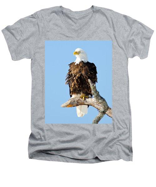 Ruffled Eagle Men's V-Neck T-Shirt