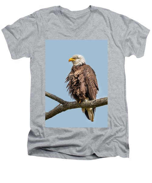 Ruffled Feathers Bald Eagle Men's V-Neck T-Shirt