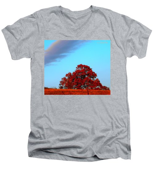 Rural Route Men's V-Neck T-Shirt