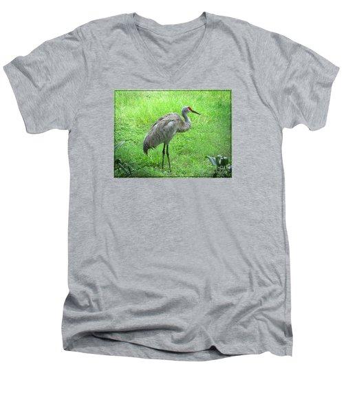 Men's V-Neck T-Shirt featuring the photograph Sandhill Crane - Bird Photography by Ella Kaye Dickey
