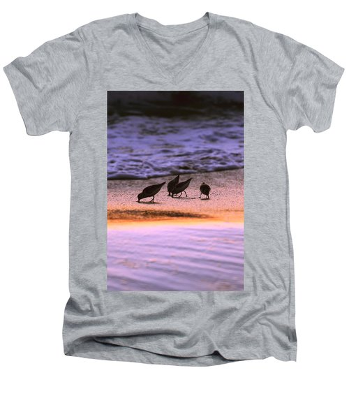 Sandpiper Morning Men's V-Neck T-Shirt
