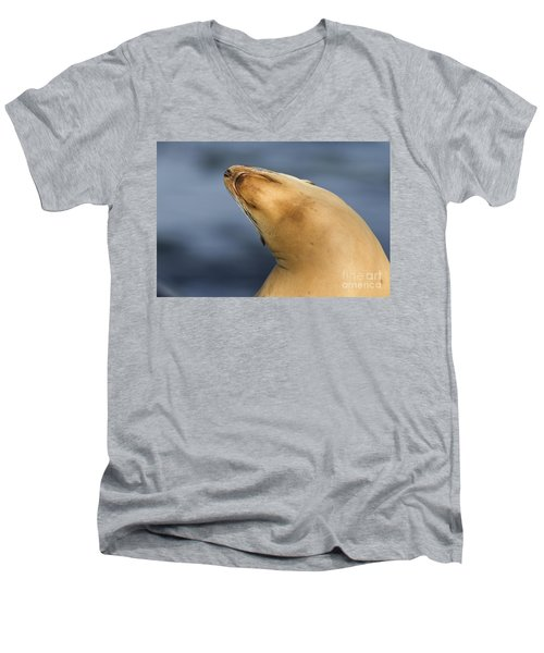 Men's V-Neck T-Shirt featuring the photograph Sea Lion Stretch by Bryan Keil