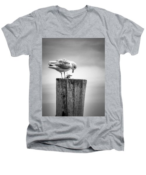 Seagull On Pier  Men's V-Neck T-Shirt