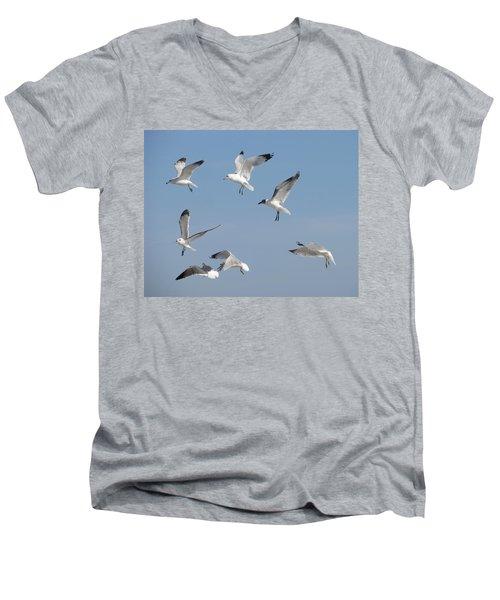 Seagulls See A Cracker Men's V-Neck T-Shirt