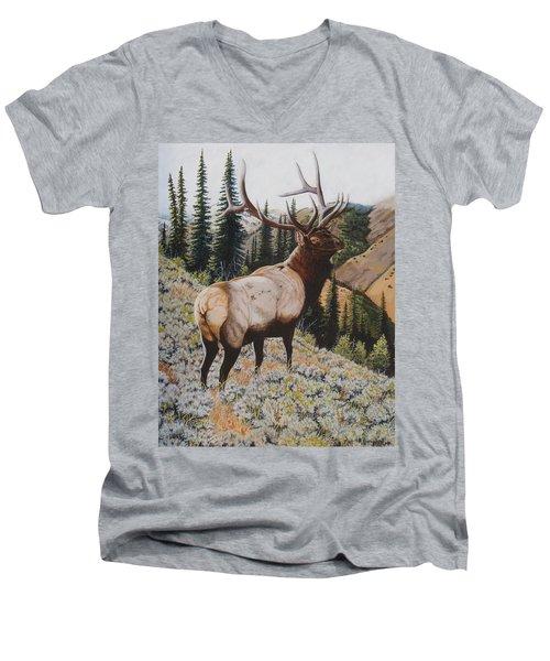 Seasoned Veteran Men's V-Neck T-Shirt
