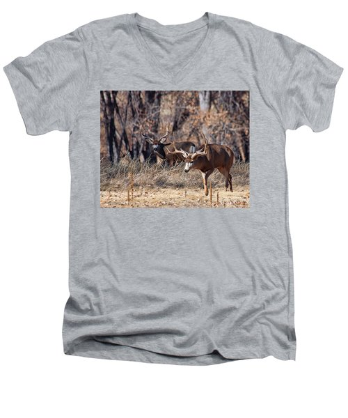 Men's V-Neck T-Shirt featuring the photograph Seeing Double by Jim Garrison