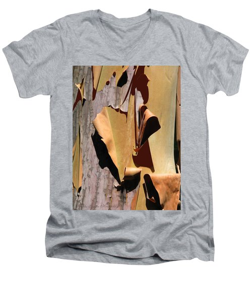 Sensitive Skin 2 Men's V-Neck T-Shirt