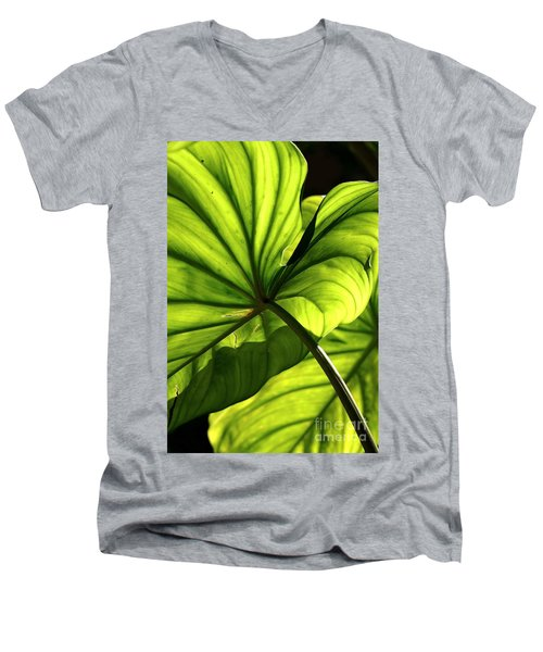Men's V-Neck T-Shirt featuring the photograph Shapes Of Hawaii 12 by Ellen Cotton