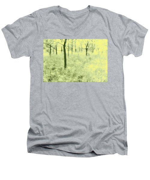 Men's V-Neck T-Shirt featuring the photograph Shimmering Spring Day by John Hansen