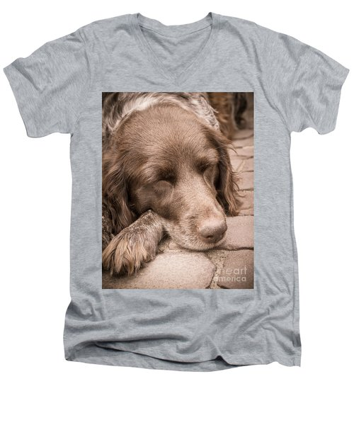 Men's V-Neck T-Shirt featuring the photograph Shishka Dog Dreaming The Day Away by Peta Thames