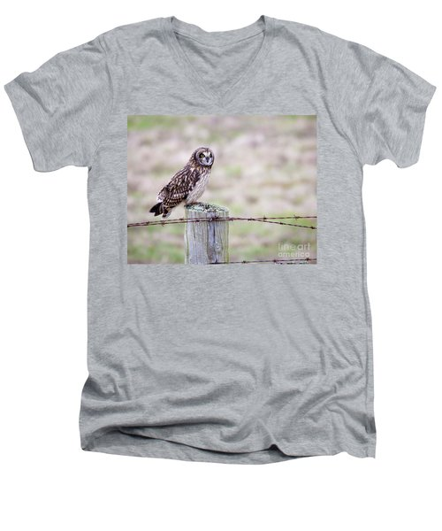 Short Eared Owl Boundary Bay Men's V-Neck T-Shirt
