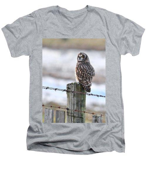 Short Eared Owl Men's V-Neck T-Shirt