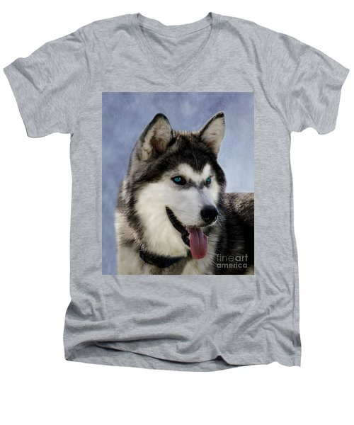Siberian Husky Men's V-Neck T-Shirt