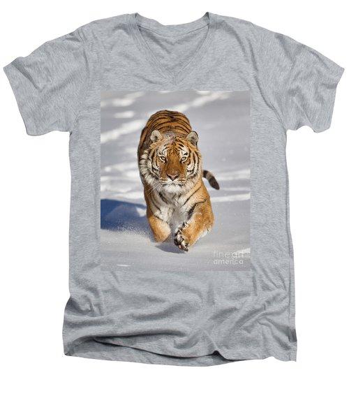 Siberian Tiger Coming Forward Men's V-Neck T-Shirt