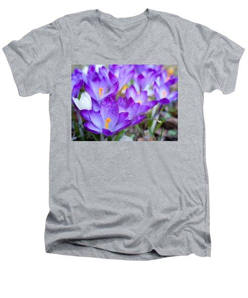 Signs Of Spring Men's V-Neck T-Shirt