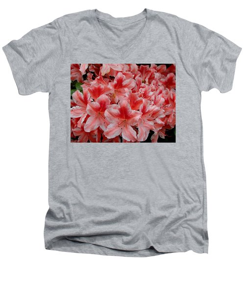Simply Azaleas Men's V-Neck T-Shirt by Rodney Lee Williams