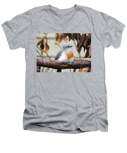 Sitting Pretty Men's V-Neck T-Shirt