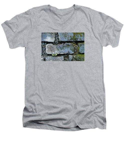 Skc 0301 Tiny Twin Leaves Men's V-Neck T-Shirt by Sunil Kapadia