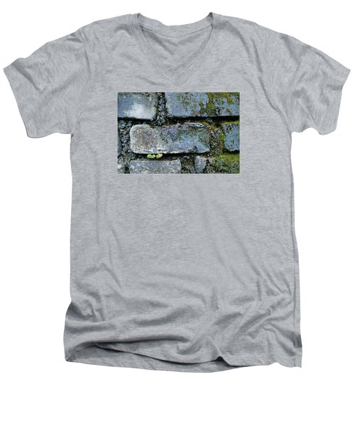 Men's V-Neck T-Shirt featuring the photograph Skc 0301 Tiny Twin Leaves by Sunil Kapadia