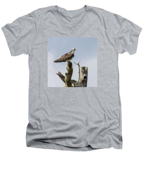 Sky Hunter 2 Men's V-Neck T-Shirt by David Lester