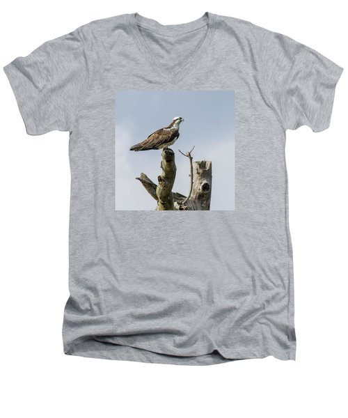 Sky Hunter 2 Men's V-Neck T-Shirt