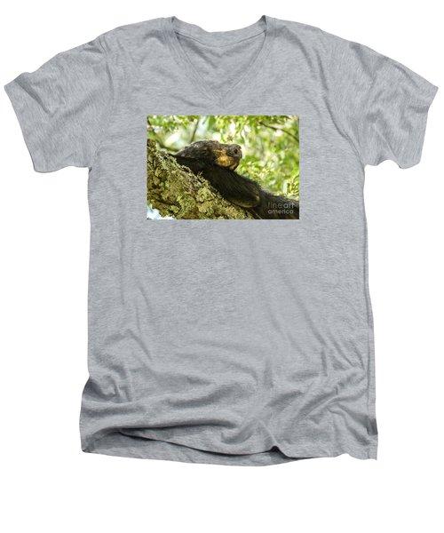 Sleeping Bear Men's V-Neck T-Shirt by Debbie Green