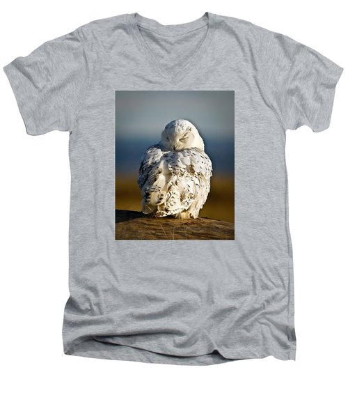 Sleeping Snowy Owl Men's V-Neck T-Shirt