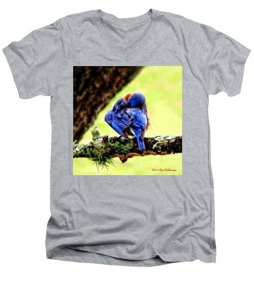 Sleepy Bluebird Men's V-Neck T-Shirt