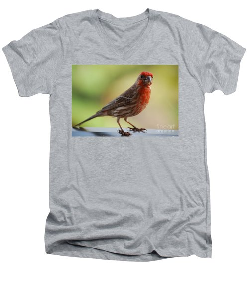 Small Brown And Red Bird Men's V-Neck T-Shirt by DejaVu Designs