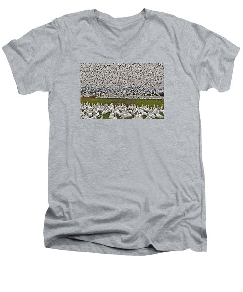 Snow Geese By The Thousands Men's V-Neck T-Shirt by Valerie Garner